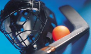 ball hockey mask